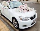 Những loài hoa thường được chọn trang trí xe cưới