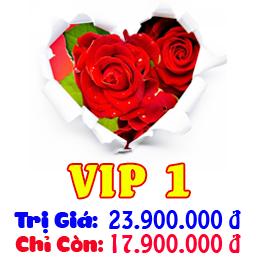 Bảng Giá Dịch Vụ Cưới Trọn Gói VIP 1