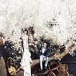 Chụp ảnh cưới đẹp mang phong cách Hàn Quốc