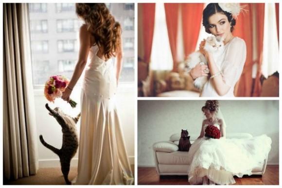 Chụp hình cưới với thú cưng