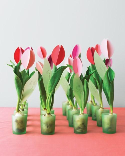 Quà tặng khách mời gồm Hoa và cây