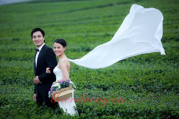 Chụp ảnh cưới ở Cao Nguyên Mộc Châu