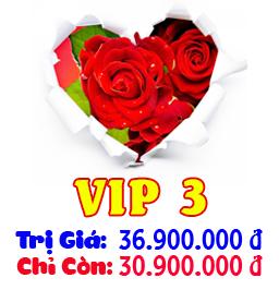 Gói Dịch Vụ Cưới Trọn Gói VIP 3