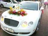 Mẫu xe cưới đẹp